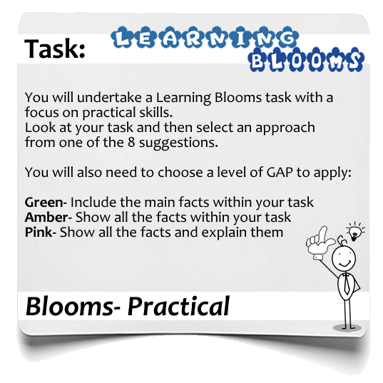 Learning Blooms Practical 1